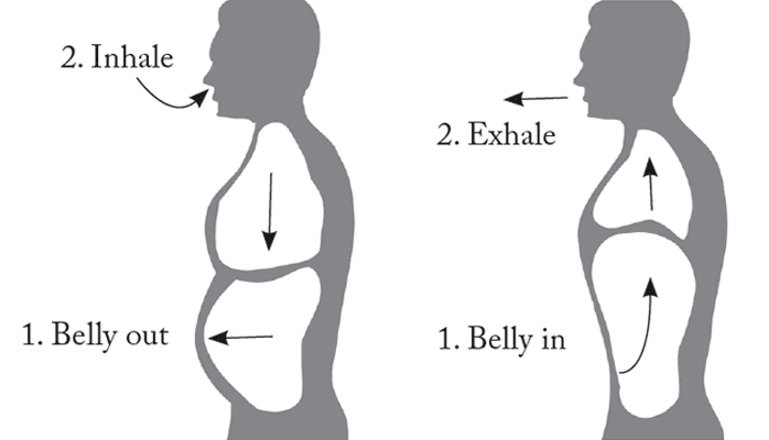 Image result for abdominal breathing